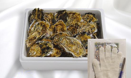 画像: 生食用殻付き浦村牡蠣(20個入り)×4セット