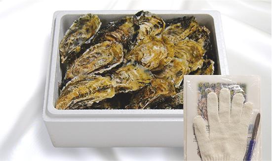 画像: 生食用殻付き浦村牡蠣(100個入り)