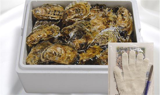 画像: 生食用殻付き浦村牡蠣(70個入り)